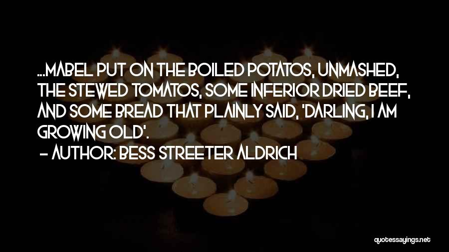 Growing Old With Someone Quotes By Bess Streeter Aldrich