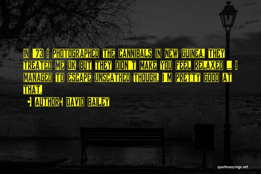 Guinea Quotes By David Bailey