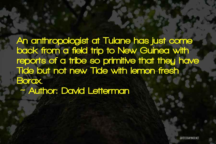 Guinea Quotes By David Letterman