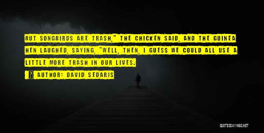Guinea Quotes By David Sedaris