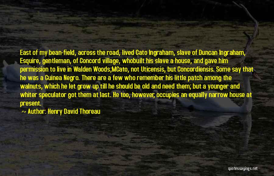 Guinea Quotes By Henry David Thoreau