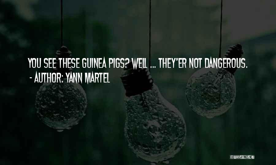 Guinea Quotes By Yann Martel