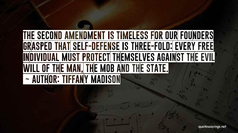 Guns And Government Quotes By Tiffany Madison