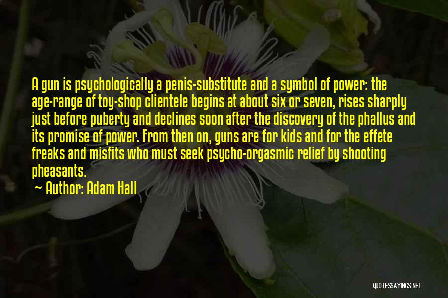 Guns And Power Quotes By Adam Hall