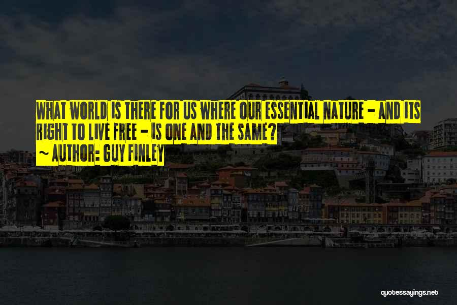Guy Finley Quotes 1349037