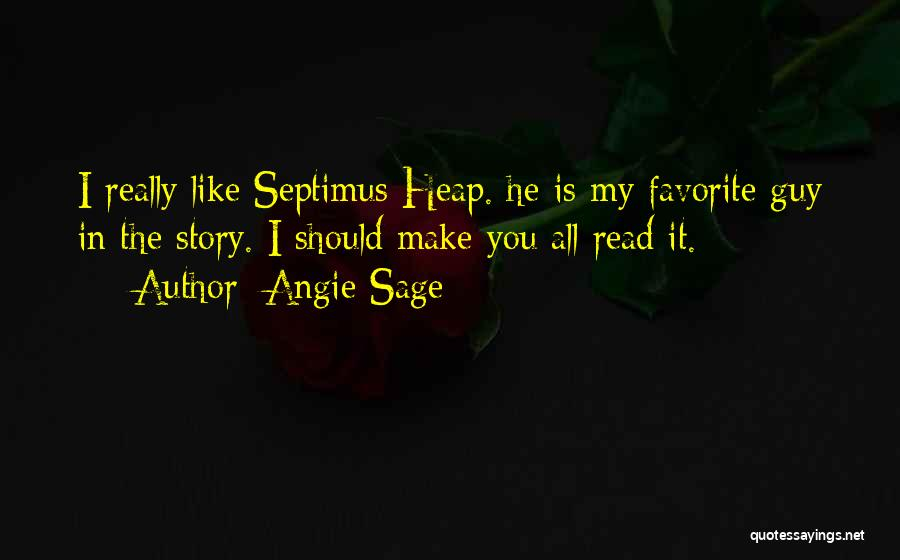 Guy You Really Like Quotes By Angie Sage