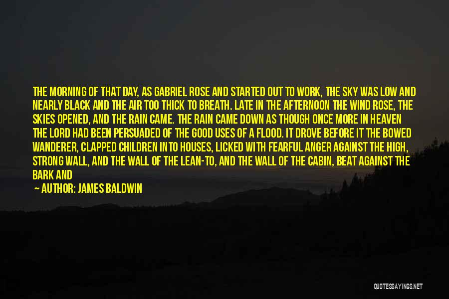Had A Good Day At Work Quotes By James Baldwin