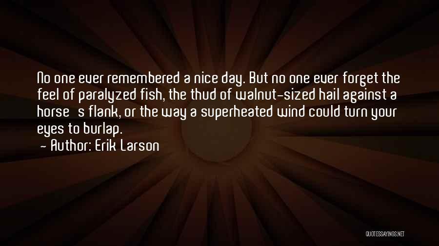 Hail Weather Quotes By Erik Larson