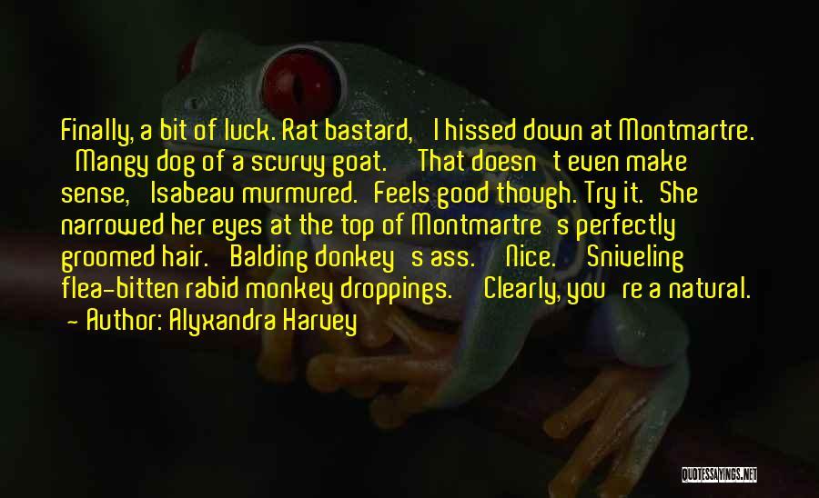 Hair Of The Dog Quotes By Alyxandra Harvey