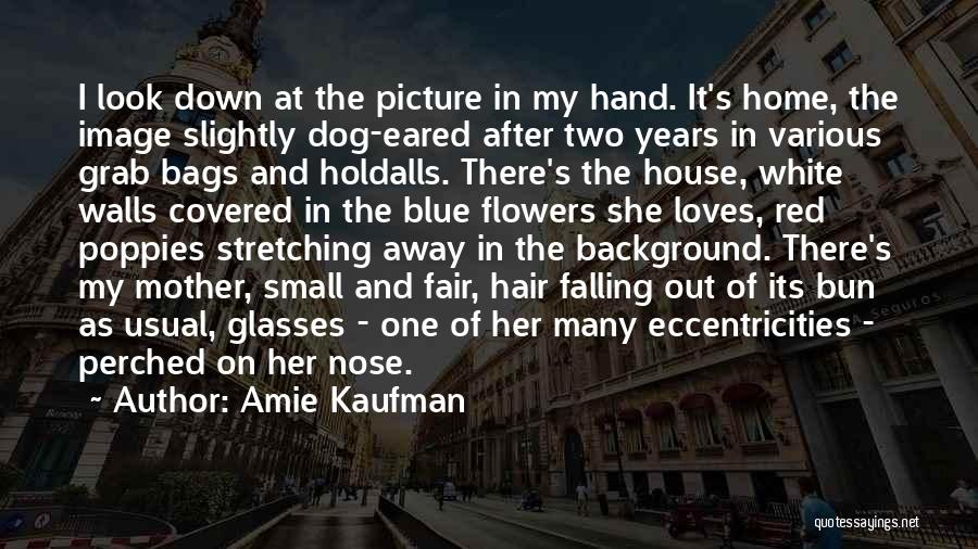 Hair Of The Dog Quotes By Amie Kaufman