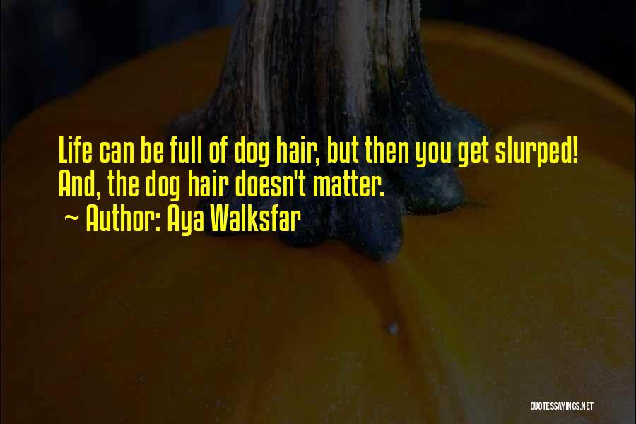 Hair Of The Dog Quotes By Aya Walksfar