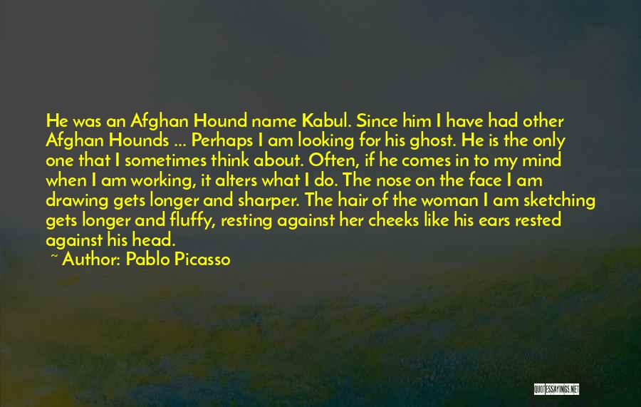Hair Of The Dog Quotes By Pablo Picasso