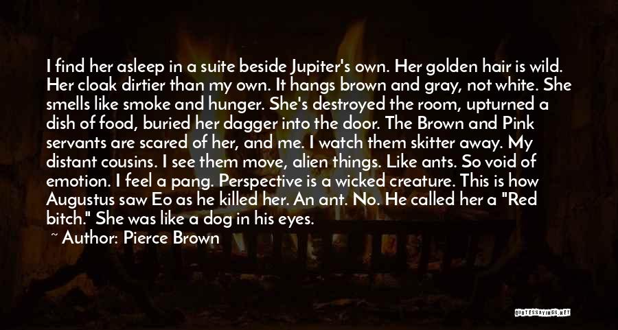 Hair Of The Dog Quotes By Pierce Brown