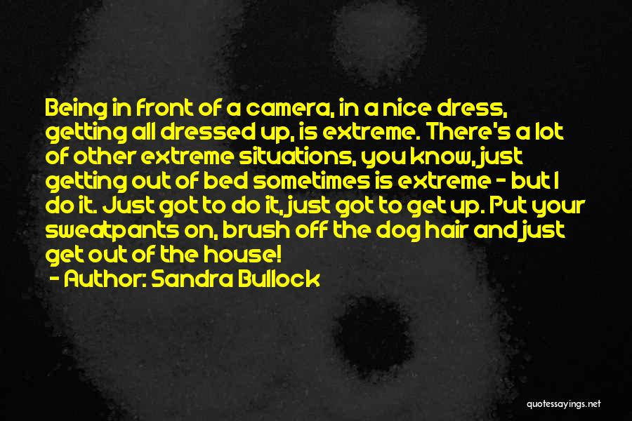 Hair Of The Dog Quotes By Sandra Bullock