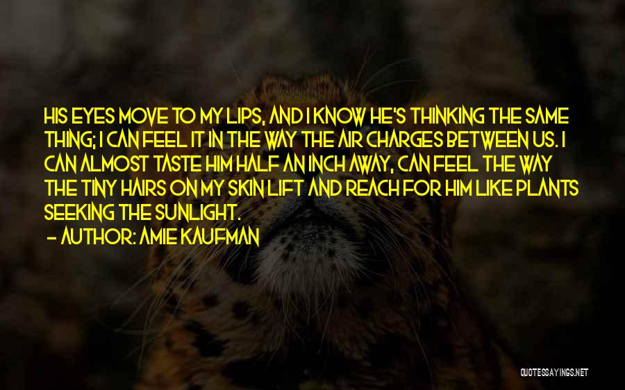 Half In Love Quotes By Amie Kaufman