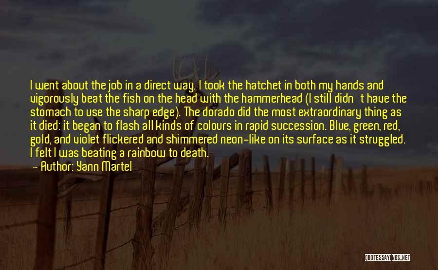 Hammerhead Quotes By Yann Martel