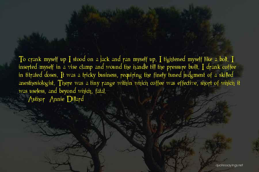 Handle Business Quotes By Annie Dillard