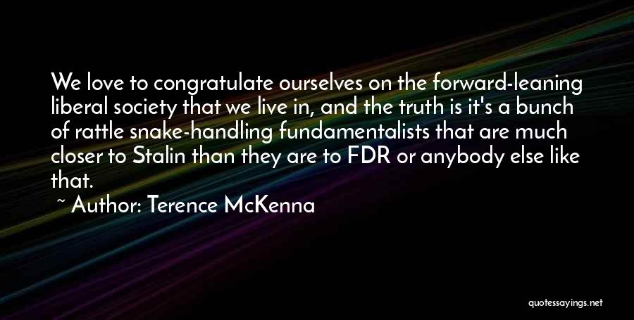 Handling The Truth Quotes By Terence McKenna