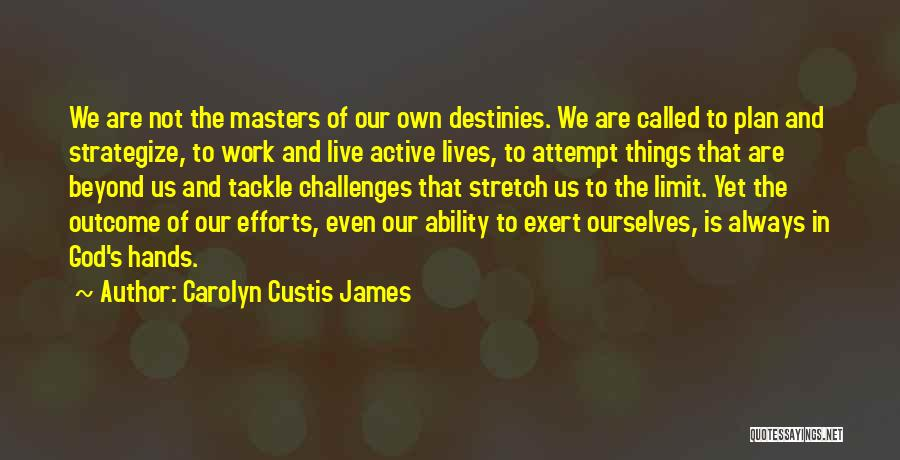 Hands And Work Quotes By Carolyn Custis James