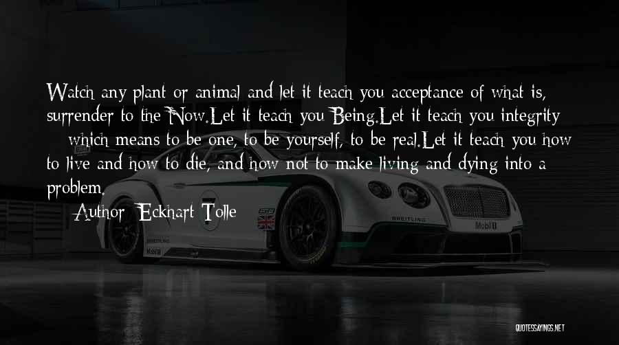 Happiness And Being Yourself Quotes By Eckhart Tolle