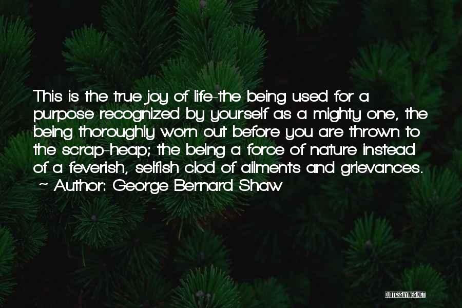 Happiness And Being Yourself Quotes By George Bernard Shaw