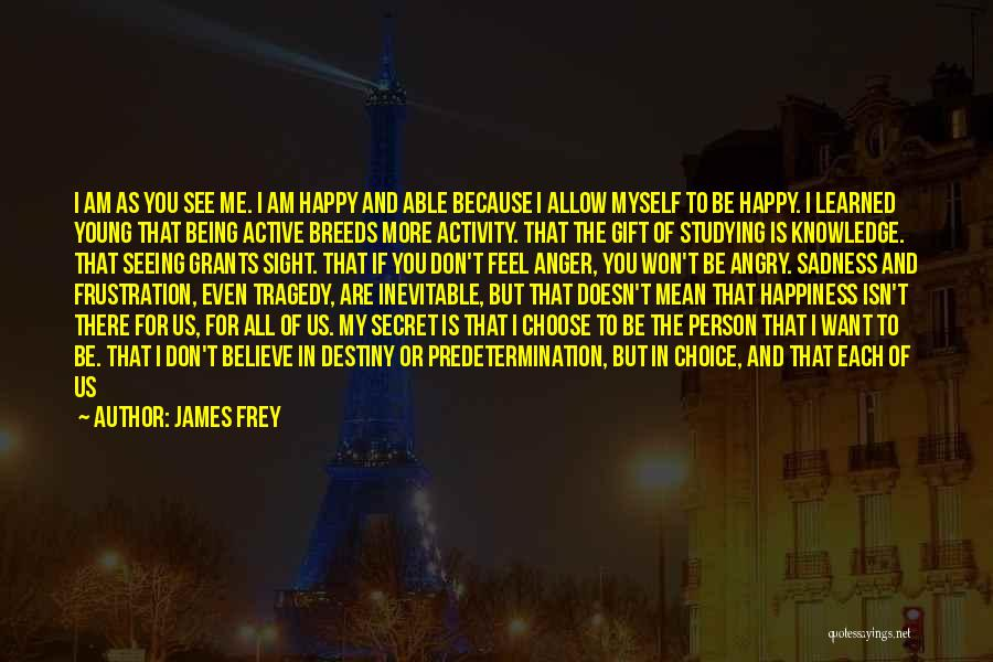 Happiness Being A Choice Quotes By James Frey