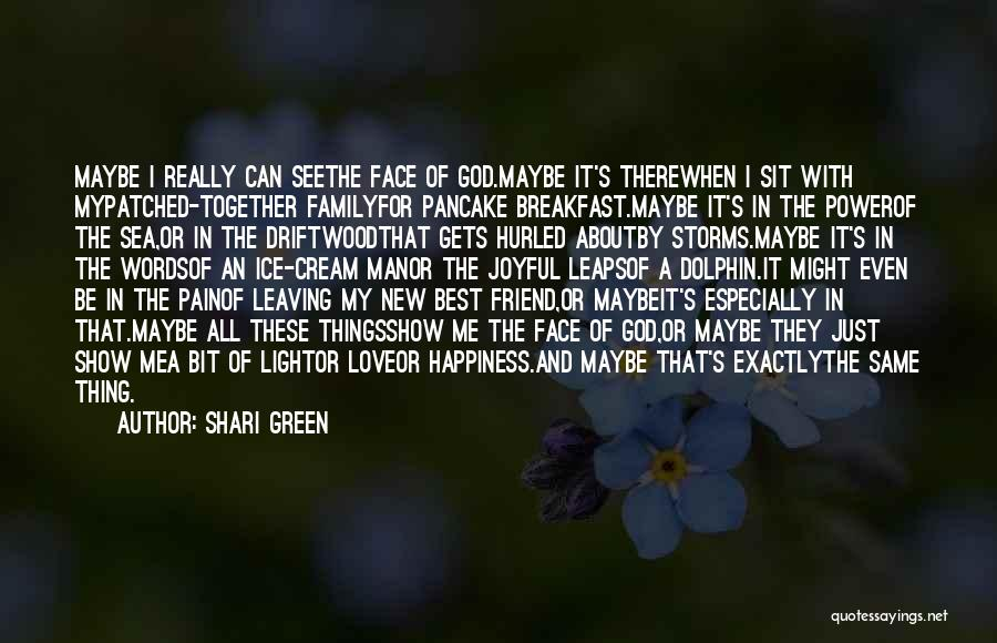 Happiness In The Family Quotes By Shari Green