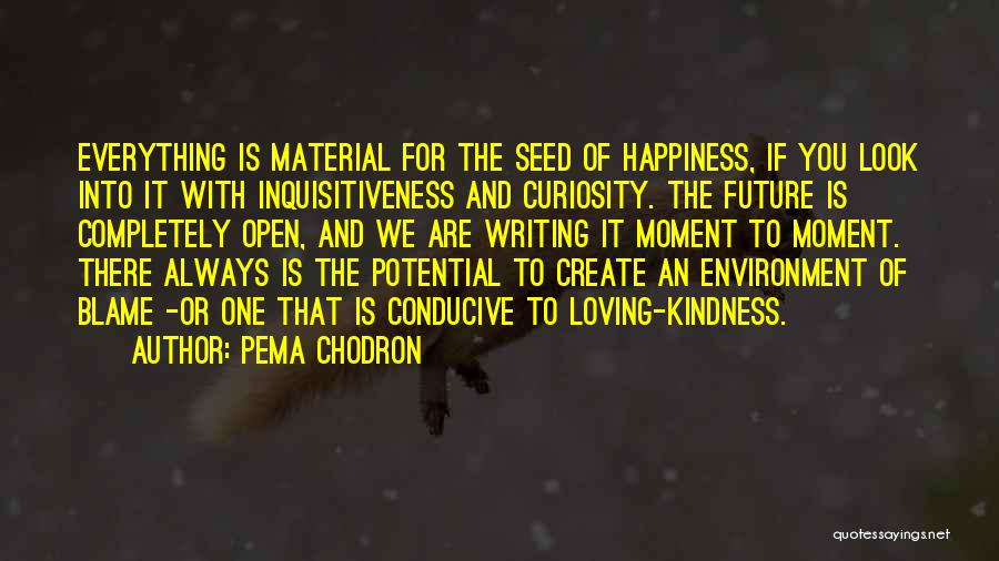 Happiness Is Loving You Quotes By Pema Chodron