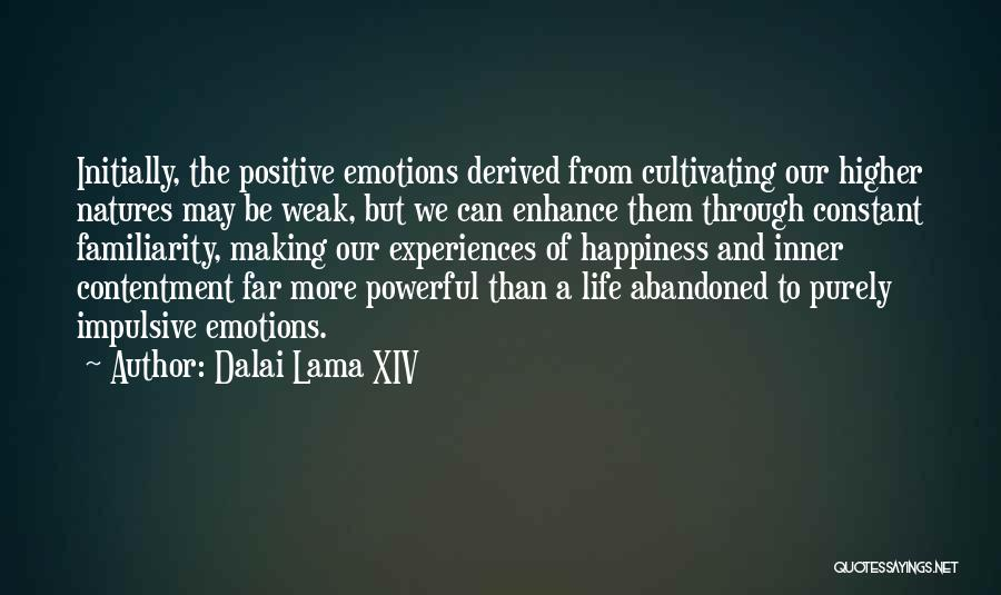 Happiness Is Not Constant Quotes By Dalai Lama XIV