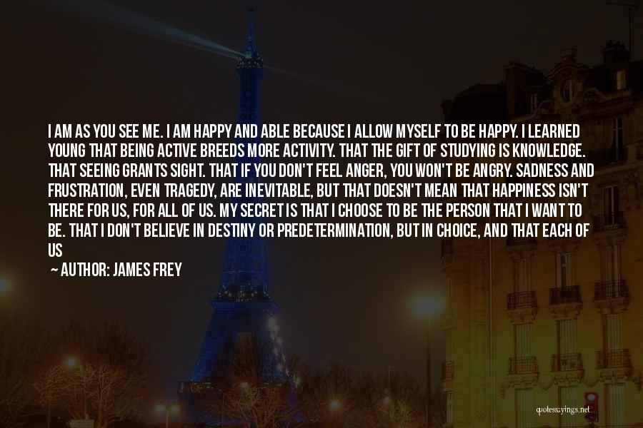 Happy Are Sadness Quotes By James Frey