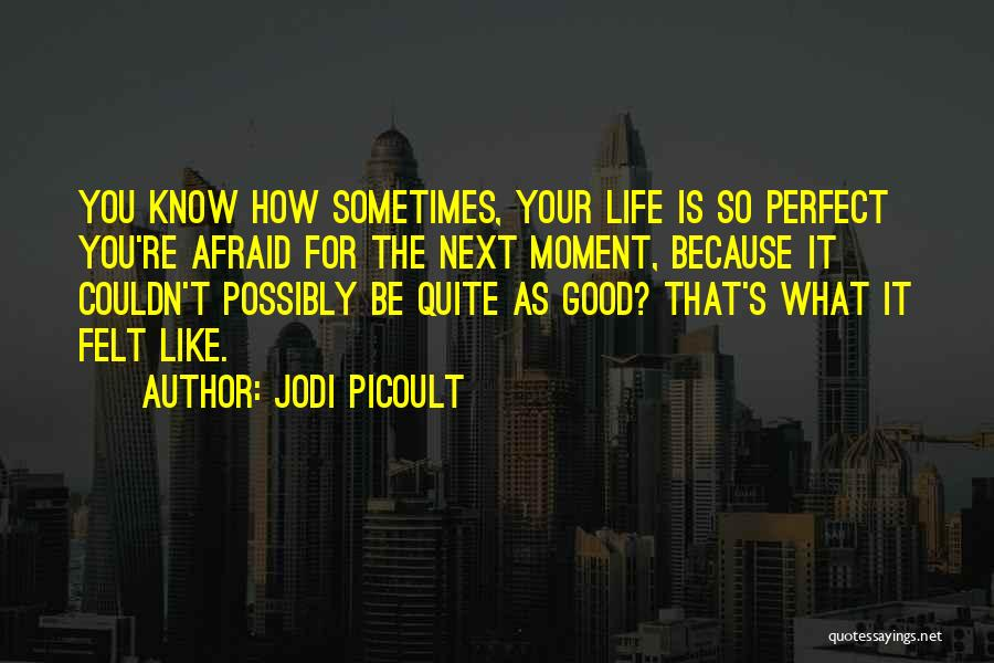 Happy Good Life Quotes By Jodi Picoult