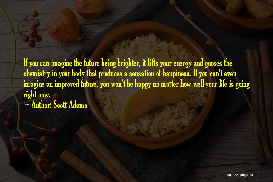 Happy Life Now Quotes By Scott Adams