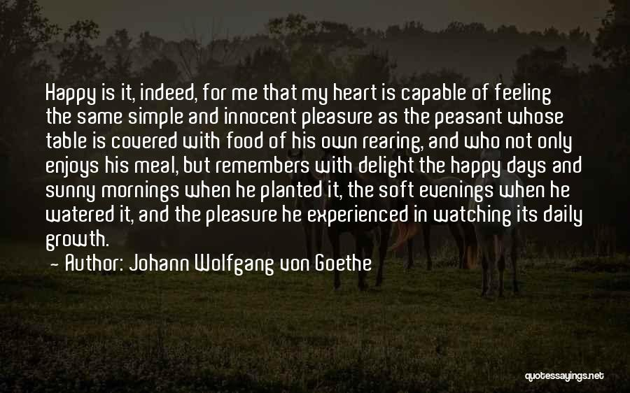 Happy Meal Quotes By Johann Wolfgang Von Goethe