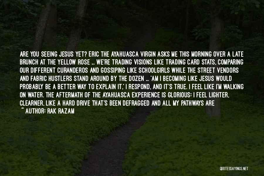 Hard Drive Quotes By Rak Razam