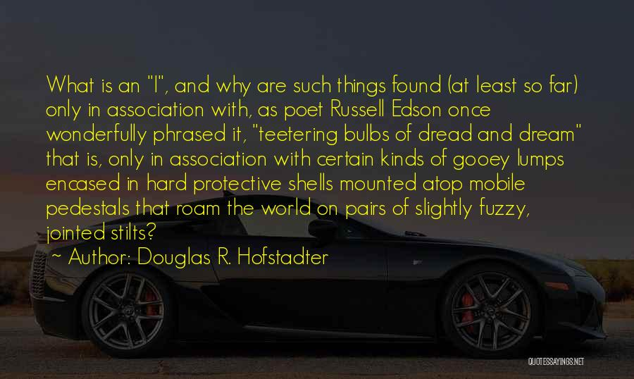 Hard Things Quotes By Douglas R. Hofstadter