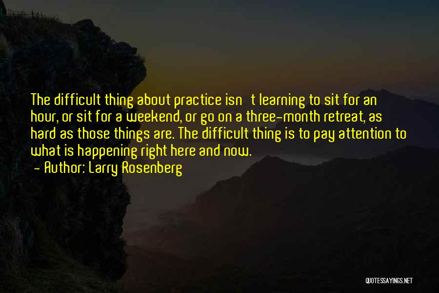 Hard Things Quotes By Larry Rosenberg