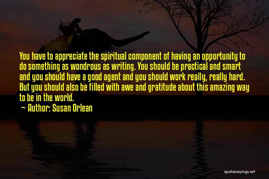 Hard Work Smart Work Quotes By Susan Orlean