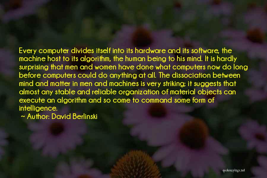 Hardware And Software Quotes By David Berlinski
