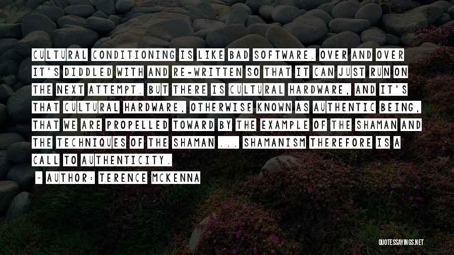 Hardware And Software Quotes By Terence McKenna