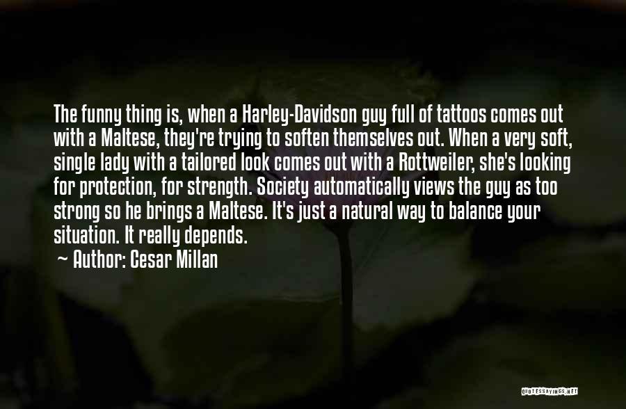 Harley Davidson Quotes By Cesar Millan