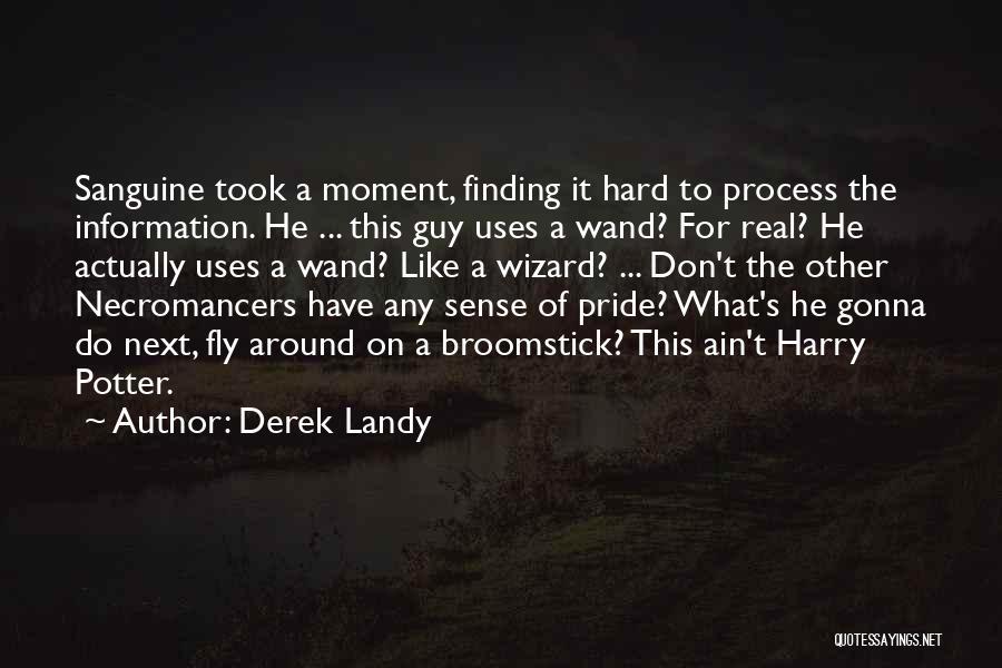 Harry Potter Broomstick Quotes By Derek Landy