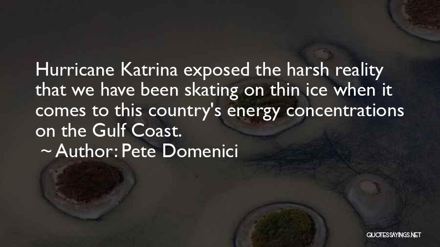 Harsh Reality Quotes By Pete Domenici