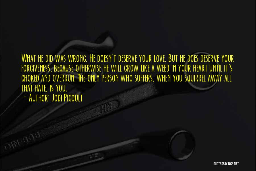 Hate What You Did Quotes By Jodi Picoult