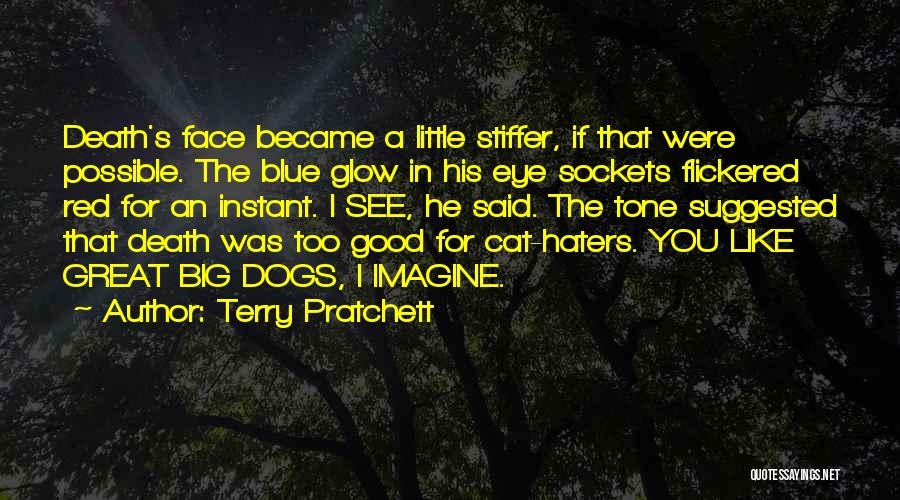 Haters Be Like Quotes By Terry Pratchett