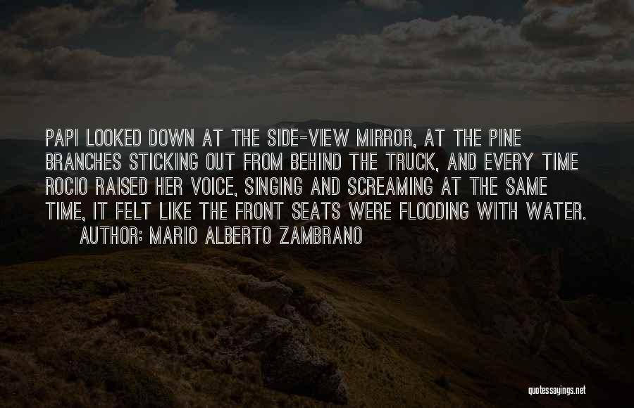 Have Several Seats Quotes By Mario Alberto Zambrano