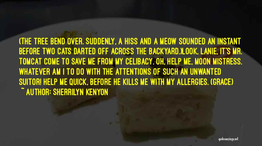 Having A Suitor Quotes By Sherrilyn Kenyon