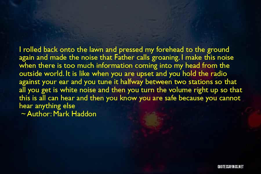 Having Aspergers Quotes By Mark Haddon