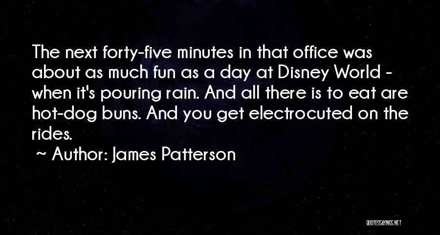 Having Fun In The Rain Quotes By James Patterson