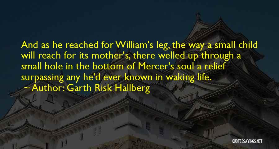 Having Only One Mother Quotes By Garth Risk Hallberg