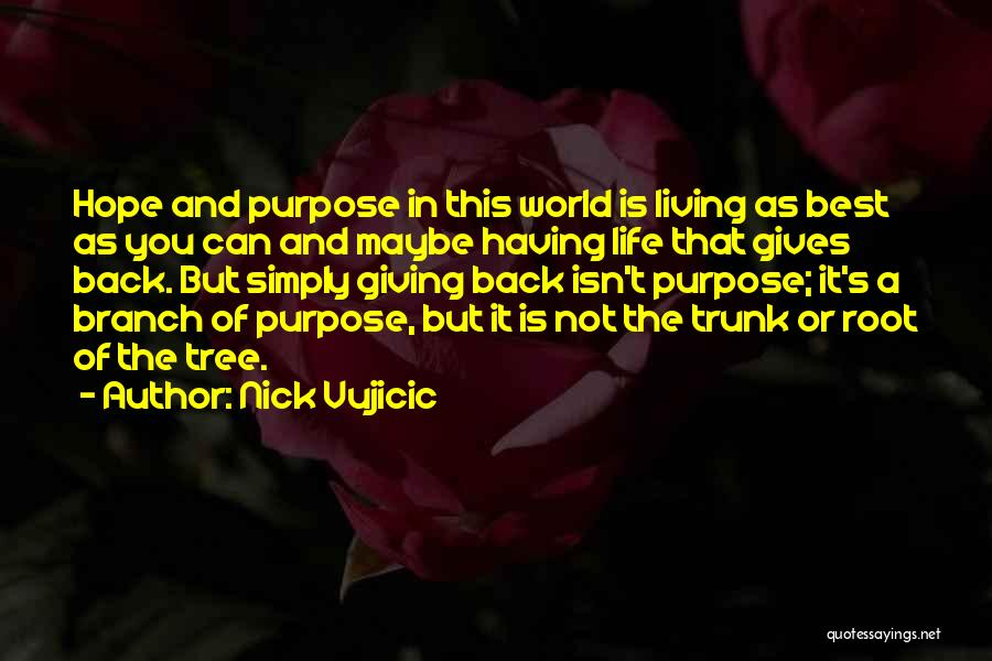 Having The Best Life Quotes By Nick Vujicic